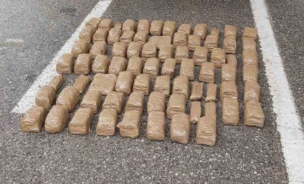 Zaplijenjeno 30 kilograma marihuane na Šćepan polju